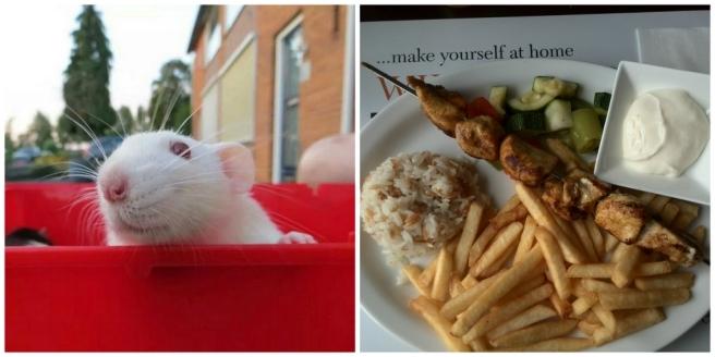 Ratten, Rotterdam, Restaurant, Iskender