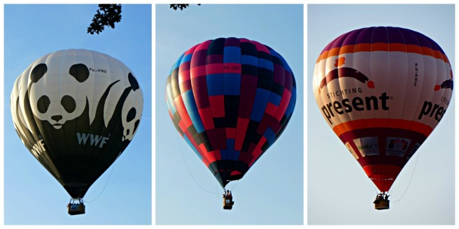 ballonfiesta_luchtballonnen_barneveld_wwf_stichting_present