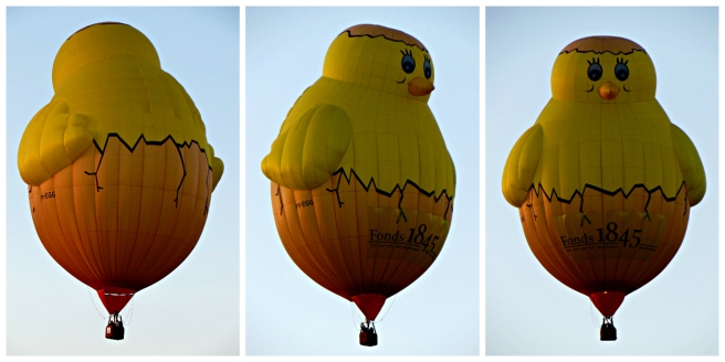 ballonfiesta_luchtballonnen_barneveld_kuiken