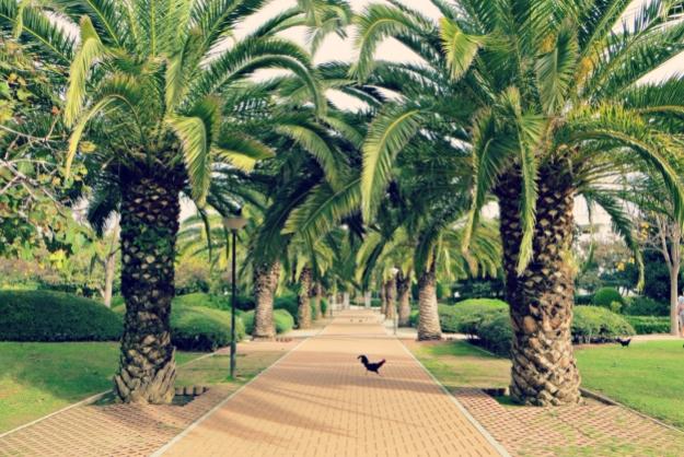 Lichtpuntjes #2 – Spanje, lovely friends & gewoon genieten