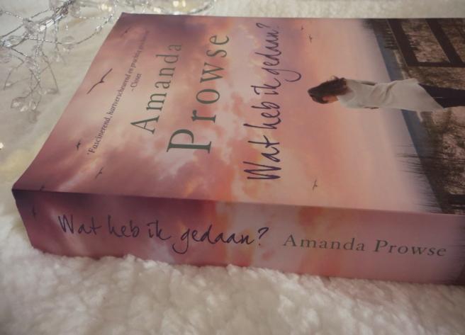 Boekrecensie   Amanda Prowse - Wat heb ik gedaan?