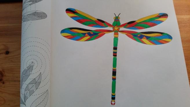 Kleurboek voor Volwassenen. Kleur jezelf kalm: dierenrijk kleurboek (